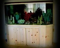Пресный аквариум в доме
