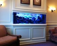 Встроенный морской акваруим