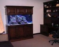 Морской аквариум в кабинете